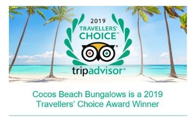2019 TripAdvisor Award Winners